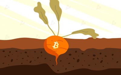 Bitcoin e il primo restyling in quattro anni